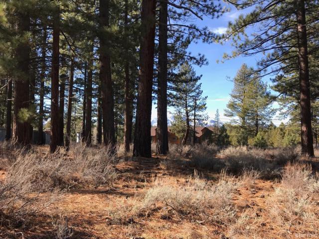 1308 Gilmore Lake Road, South Lake Tahoe, CA 96150 (MLS #128618) :: Sierra Sotheby's International Realty