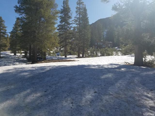 475 Larkspur Drive #530, Kirkwood, CA 95646 (MLS #130944) :: Kirkwood Mountain Realty