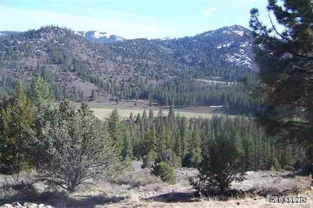 12 Silver Peak, Markleeville, CA 96120 (MLS #125138) :: Sierra Sotheby's International Realty