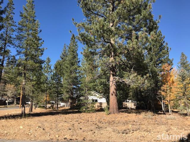 3393 E River Park Drive, South Lake Tahoe, CA 96150 (MLS #128449) :: Sierra Sotheby's International Realty