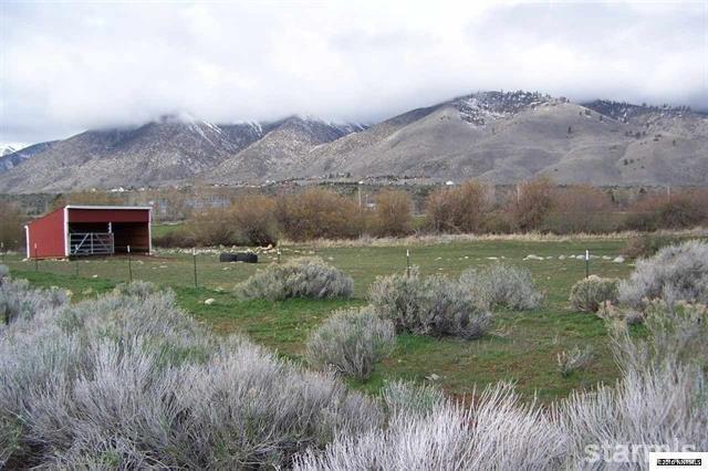 9 Chambers Lane, Woodfords, CA 96120 (MLS #128718) :: Sierra Sotheby's International Realty