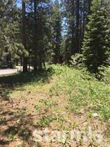 939 Tahoe Island Drive, South Lake Tahoe, CA 96150 (MLS #128938) :: Sierra Sotheby's International Realty