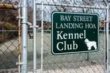 80 Bay Street Landing - Photo 51