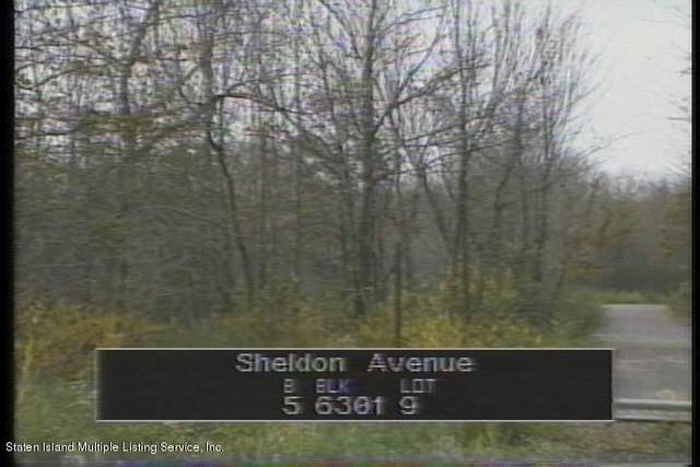 0 Sheldon Avenue, Staten Island, NY 10312 (MLS #1141959) :: Team Gio | RE/MAX