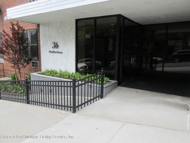 36 Hamilton Avenue 6D, Staten Island, NY 10301 (MLS #1146596) :: Team Pagano