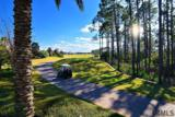 253 Conservatory Drive - Photo 14