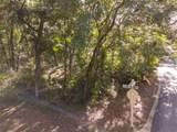 701 Camelia Trail - Photo 5