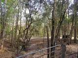 258 Orange Springs Cutoff Rd - Photo 40