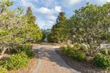 111 Nature Walk Pkwy - Photo 25