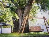 117 Colon Ave + Tiny House & Suite - Photo 1