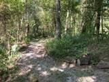 6175 Solano Creek Rd - Photo 49
