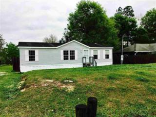 104 Waterside Avenue, Satsuma, FL 32189 (MLS #169311) :: St. Augustine Realty