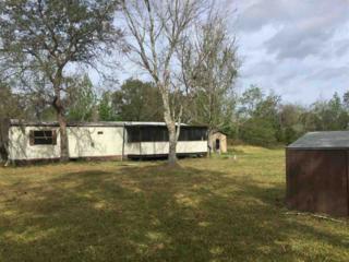 1939 Tomahawk Rd, St Augustine, FL 32092 (MLS #169313) :: St. Augustine Realty