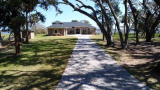 116 Diego Island Court, St Augustine, FL 32095 (MLS #168785) :: St. Augustine Realty