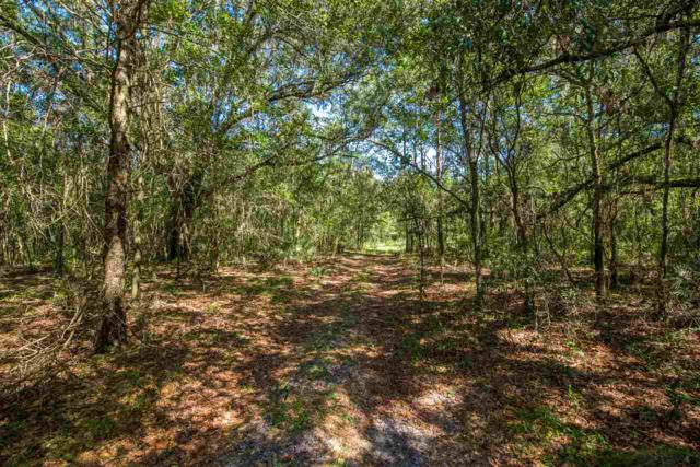 5355 St. Ambrose Church Road, Elkton, FL 32033 (MLS #173644) :: Florida Homes Realty & Mortgage
