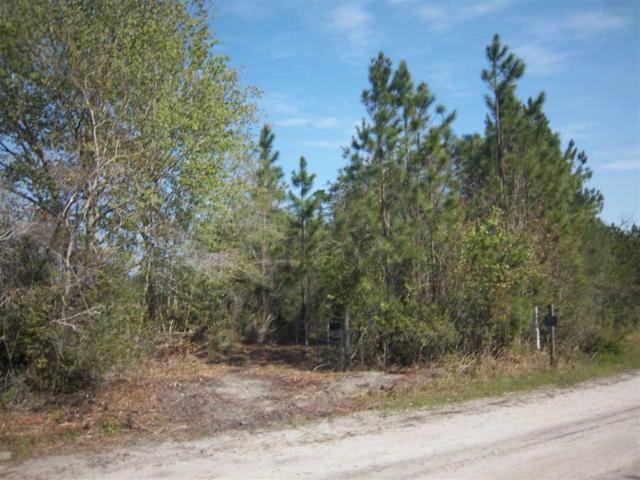 0 Bluff Creek Rd, Glen St. Mary, FL 32040 (MLS #177817) :: Pepine Realty