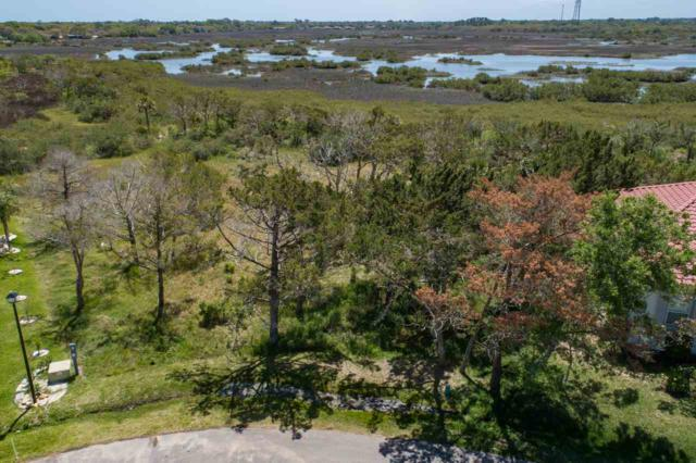 111 Oyster Catcher Circle, St Augustine, FL 32080 (MLS #178156) :: Memory Hopkins Real Estate