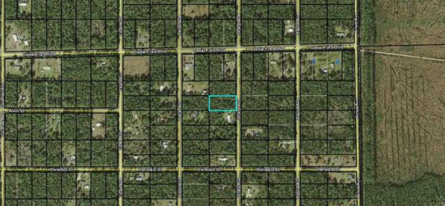 10425 Crotty Ave, Hastings, FL 32145 (MLS #178784) :: St. Augustine Realty