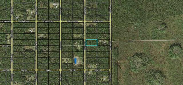 Hastings, FL 32145 :: St. Augustine Realty