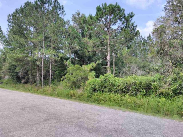 10605 & 10615 Zigler Ave, Hastings, FL 32145 (MLS #180397) :: 97Park
