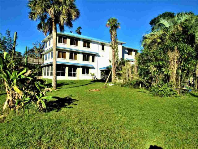 703 Front St, Welaka, FL 32193 (MLS #180605) :: 97Park