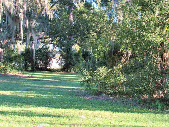 0 Unassigned, Welaka, FL 32193 (MLS #180619) :: Memory Hopkins Real Estate