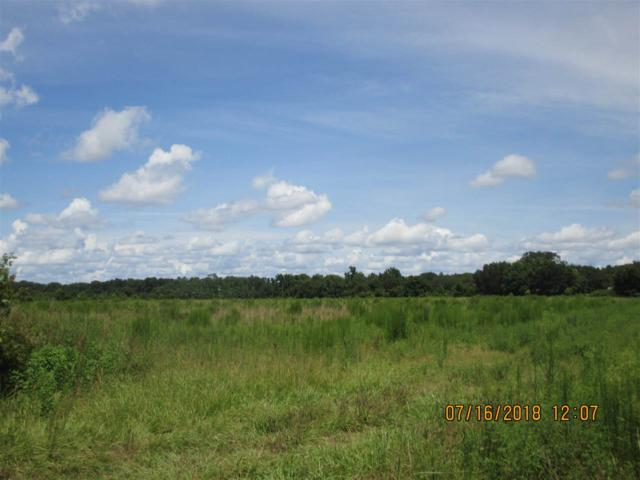 645 County Road  13 A S, Elkton, FL 32033 (MLS #180637) :: 97Park