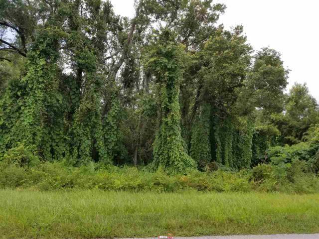 0 Unassigned, Crescent City, FL 32112 (MLS #180842) :: Memory Hopkins Real Estate