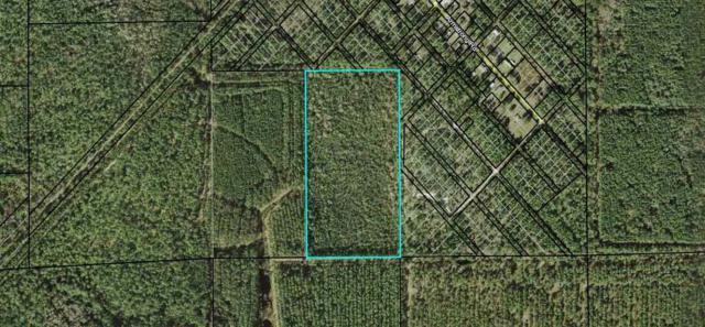Robin Street, Elkton, FL 32033 (MLS #181093) :: 97Park