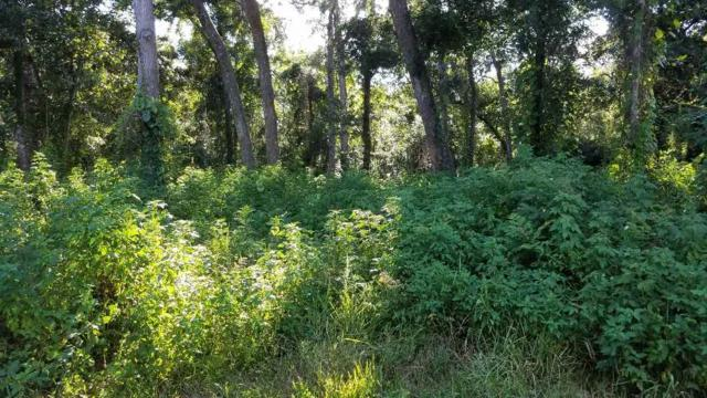 3249 Turtle Creek Road, St Augustine, FL 32086 (MLS #181102) :: Memory Hopkins Real Estate