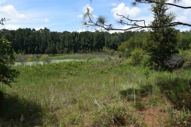 Pomona Park, FL 32181 :: Memory Hopkins Real Estate