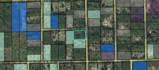 1876 Beech Blvd, Bunnell, FL 32110 (MLS #181369) :: Florida Homes Realty & Mortgage