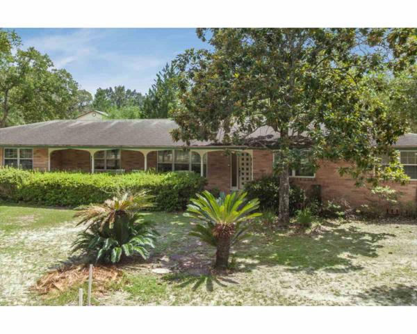 4179 Mustang Rd S, Middleburg, FL 32068 (MLS #181403) :: Memory Hopkins Real Estate