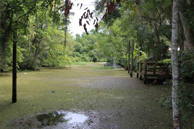150 Islander Road, Satsuma, FL 32189 (MLS #181518) :: Memory Hopkins Real Estate