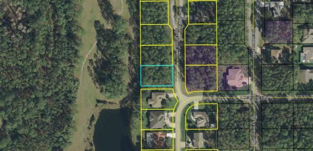 3 Lake Success Place, Palm Coast, FL 32137 (MLS #181551) :: Ancient City Real Estate
