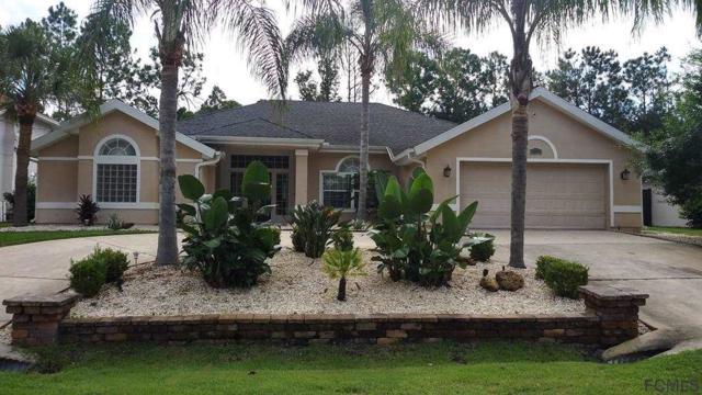 15 Woodguild Pl, Palm Coast, FL 32164 (MLS #181616) :: 97Park