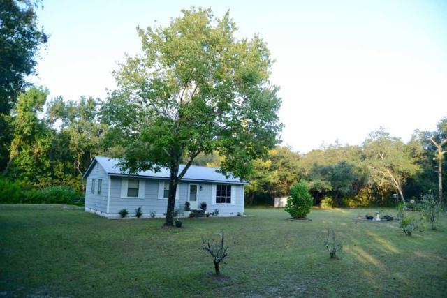 206 State Road 207A, East Palatka, FL 32131 (MLS #182071) :: 97Park