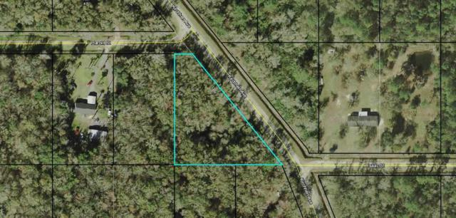 10715 Kirchherr Blvd, Hastings, FL 32145 (MLS #182697) :: St. Augustine Realty