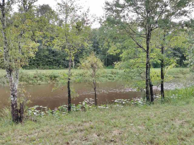 10460 W Deep Creek Blvd, Hastings, FL 32145 (MLS #182848) :: 97Park