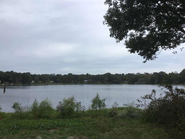 157 Silver Lake Drive, Interlachen, FL 32148 (MLS #183054) :: Memory Hopkins Real Estate