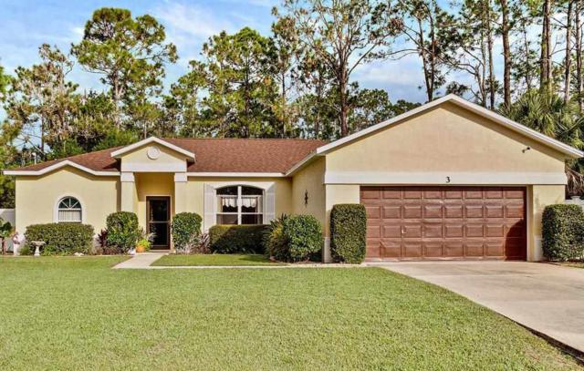 3 Raintree Pl, Palm Coast, FL 32164 (MLS #183163) :: Florida Homes Realty & Mortgage