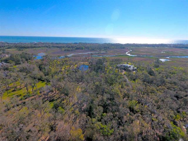 1142 Neck Road, Ponte Vedra Beach, FL 32082 (MLS #183694) :: Ancient City Real Estate