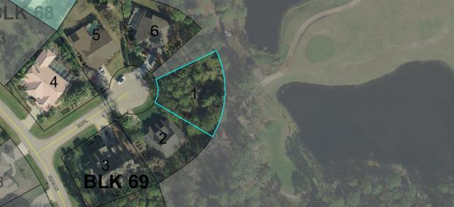 6 Eli Place, Palm Coast, FL 32164 (MLS #184229) :: Ancient City Real Estate