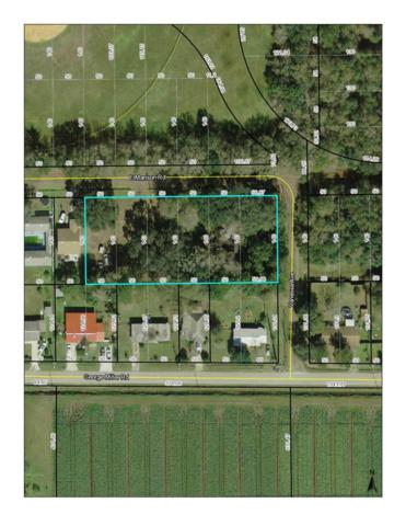 118 E Manson Rd, Hastings, FL 32145 (MLS #184884) :: 97Park