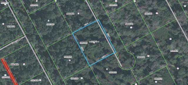 312 Hunter St, Satsuma, FL 32189 (MLS #185909) :: Florida Homes Realty & Mortgage