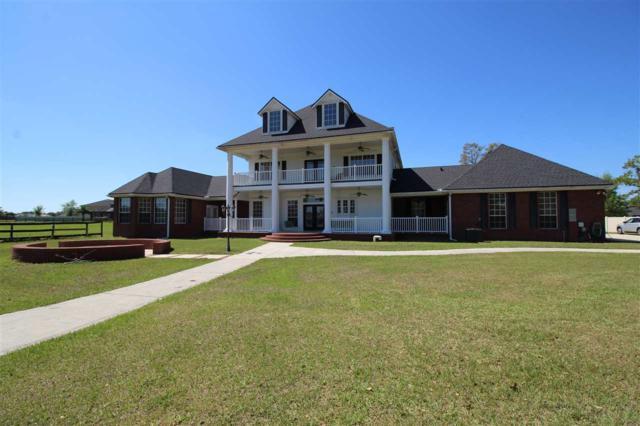 2725 Henley Road, Green Cove Springs, FL 32043 (MLS #186611) :: Tyree Tobler | RE/MAX Leading Edge