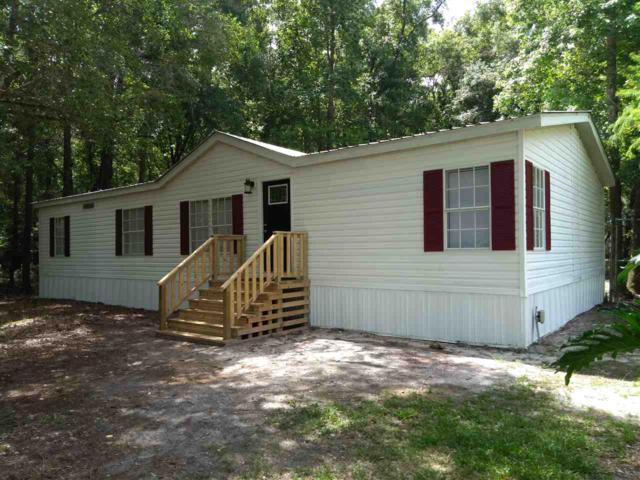4597 Jonathan St, Hastings, FL 32145 (MLS #187135) :: Florida Homes Realty & Mortgage