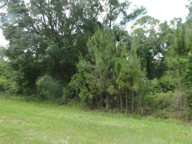 422 Birch Blvd, Georgetown, FL 32139 (MLS #187166) :: Tyree Tobler | RE/MAX Leading Edge