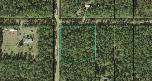 4265 Palatka Blvd., Hastings, FL 32145 (MLS #187419) :: Florida Homes Realty & Mortgage