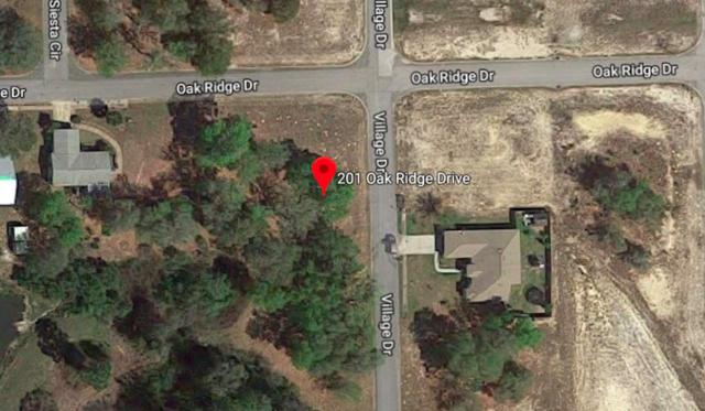 201 Oak Ridge Drive, Welaka, FL 32193 (MLS #187596) :: Tyree Tobler | RE/MAX Leading Edge
